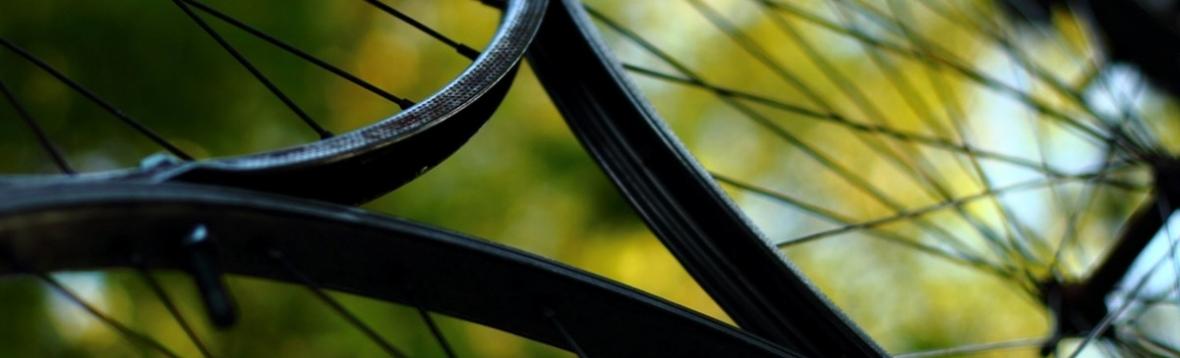Räder vor grün (c) Maike Schulz